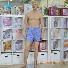 М-220.010 Трусы мужские семейные
